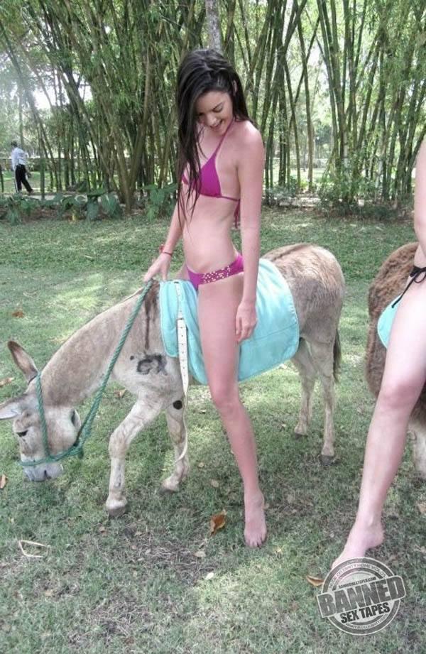 mobil köpek porno  Türk Porno Hd Sikiş Mobil Sex Video